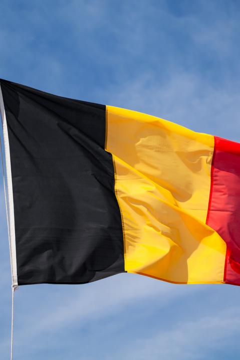 Fleet management in Belgium